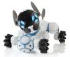 Smart Gadgets & Toys